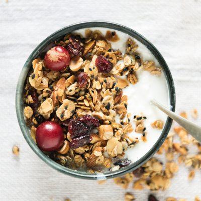 yogurt is the main source of probiotics