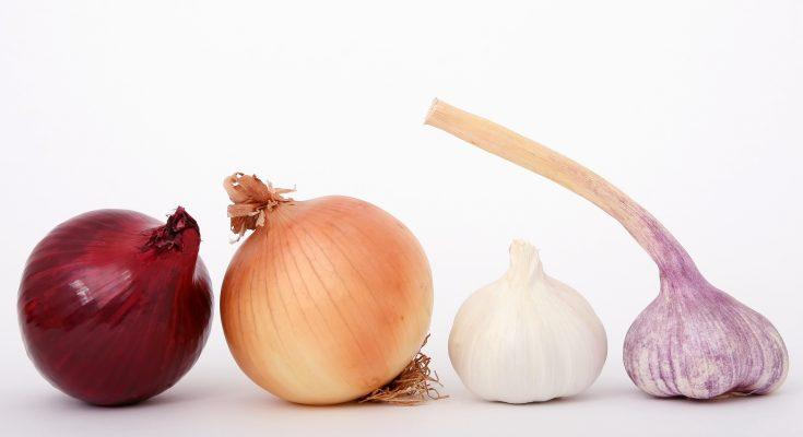 source of prebiotic garlic onion